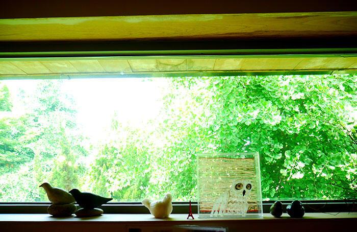 airbnb-seoul-jongno-22-house-rooftop-garden