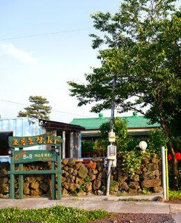 jeju-citrus-bb-airbnb-1-featured