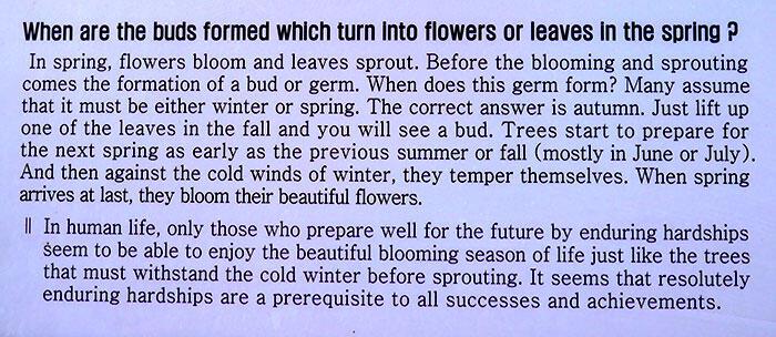 jeju-korea-16-spirited-garden-life-lessons
