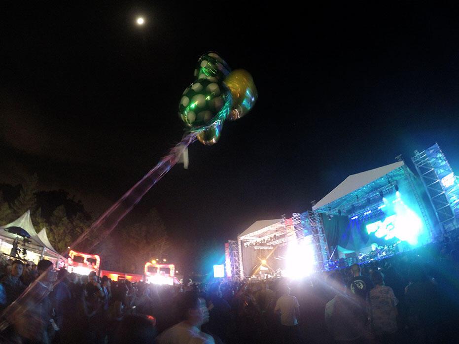 8.-August---Good-Vibes-Festival-2016-10