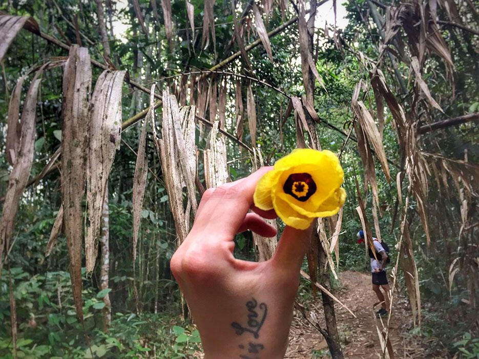 bukit-kutu-kuala-kubu-bharu-hiking-malaysia-12
