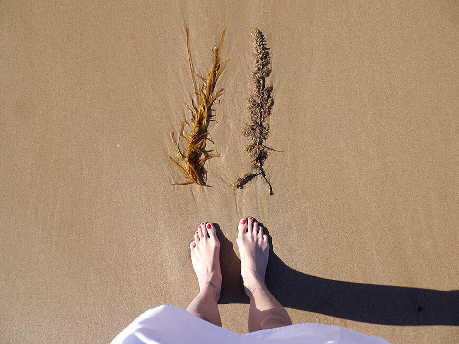 great-ocean-road-31-victoria-australia-seaweed